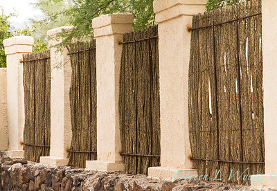 Ocotillo fence - southwestern fencing_4295