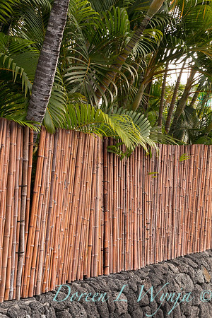 bamboo strapped together for a privacy fence in a tropical setting, on a lava rock retaining wall