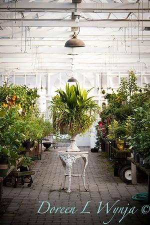 Greenhouse_009
