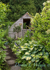 Hosta potting shed_0393HGTV