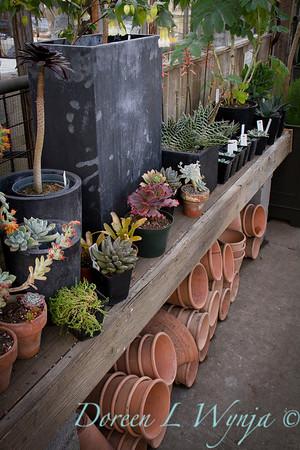 Gardeners Bench_0561