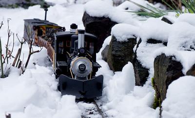 Garden Railroad 2014
