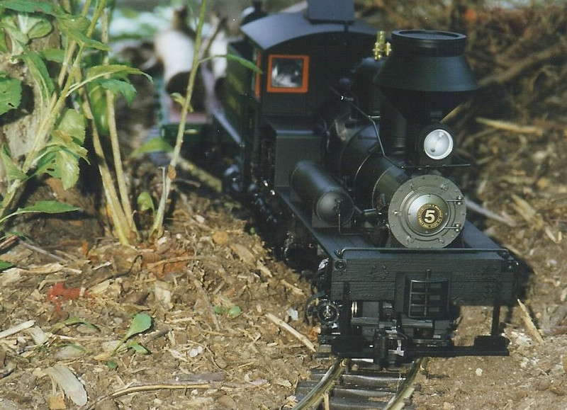 Summer of 1997, a brand new Bachmann two truck Shay. I'd long been fascinated with geared locomotives and when this went on sale I immediately snapped one up. It was the motivation to begin the process of moving the trains outside.