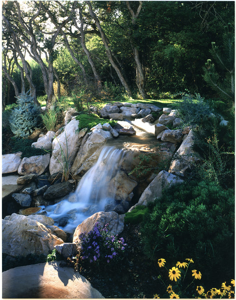 Water worn stones create instant antiquity in this water garden.
