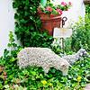 110610-Garden-001