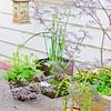 110610-Garden-019