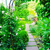 110610-Garden-016