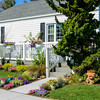 House and Garden-002