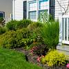House and Garden-012