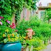 110604-Garden-002