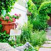 110610-Garden-002