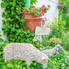 110610-Garden-006