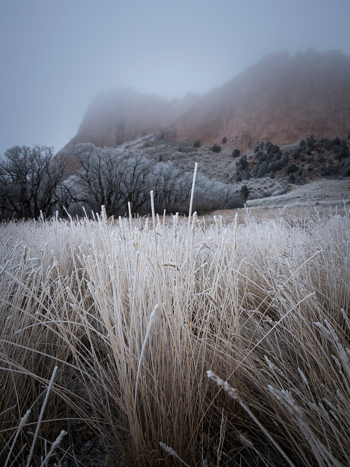 Frosty morning, Garden of the Gods