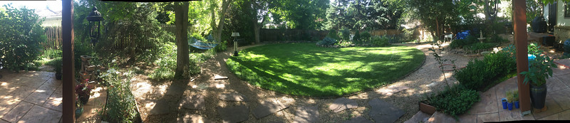 The yard unfolds