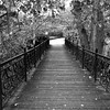 Dark bridge to a light path
