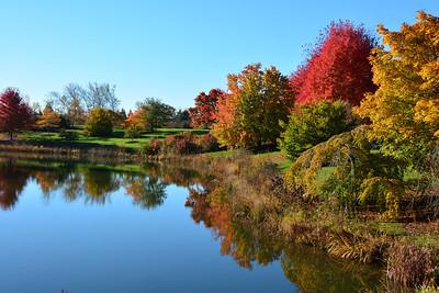 Chicago Botanic Gardens...Fall Colors