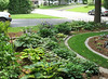 My Hosta Gardens - the front garden in mid-July 2008.