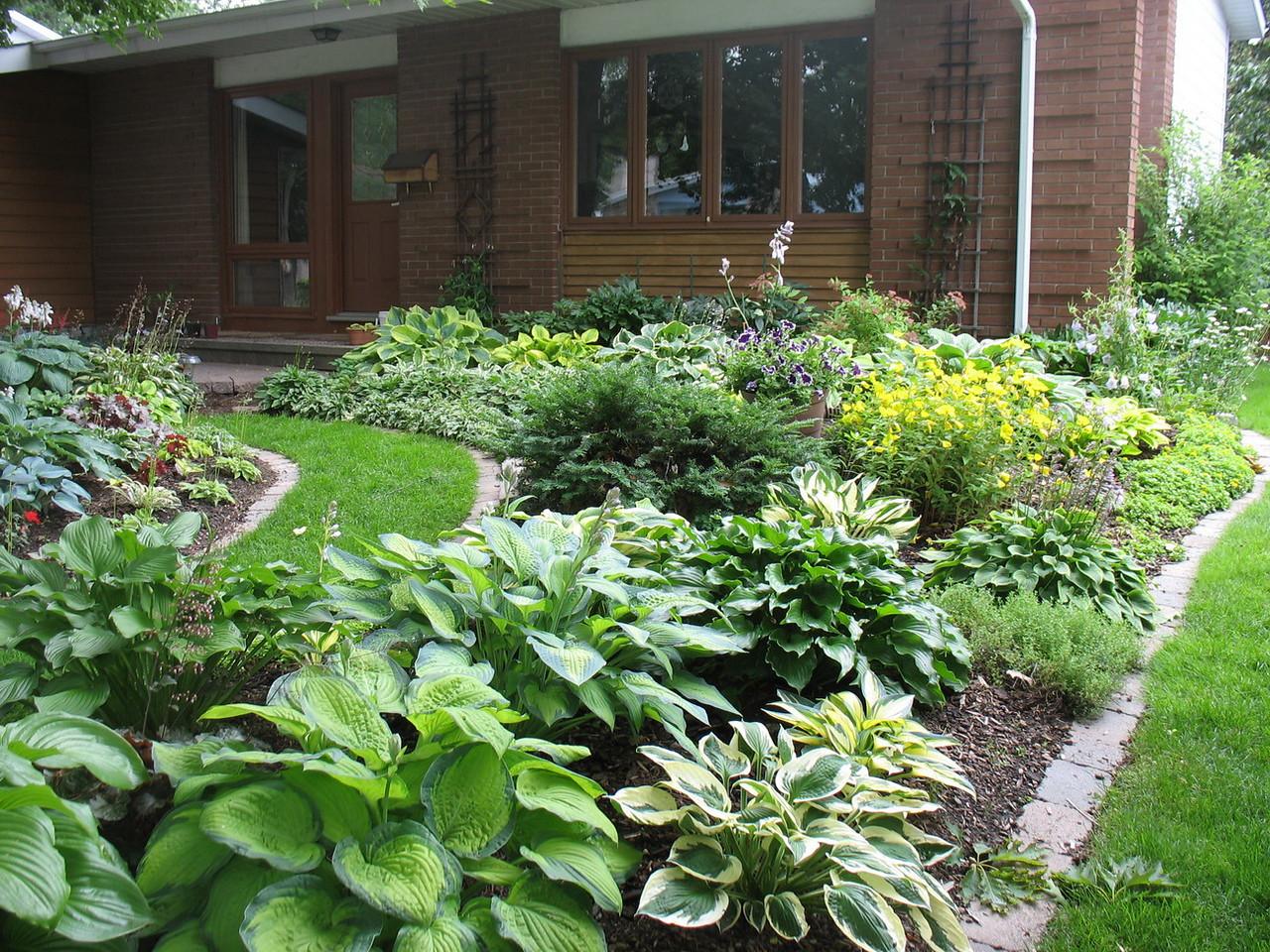 Front garden 2010