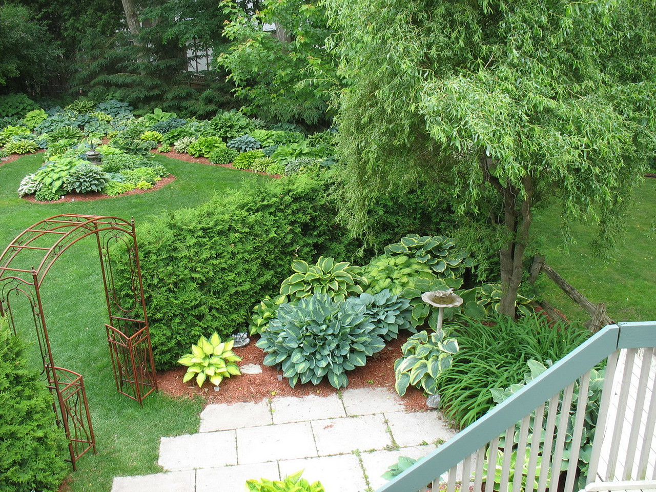 Don Budd's garden from deck. Don's was the first garden on the tour, followed by a visit to Budd Gardens.