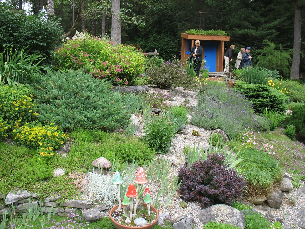 """The garden in front of the """"sham shack"""""""