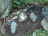 Newly placed rock and the outlet for my dry creek bed. November 2007