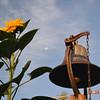 Sunflower & Bell