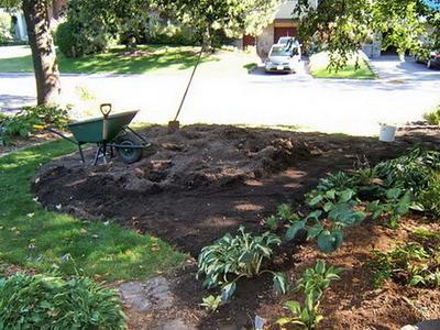 The new Hosta Garden 2007