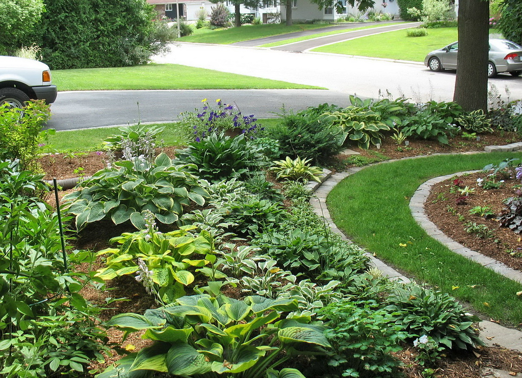 The gardens with the stone edging in place.