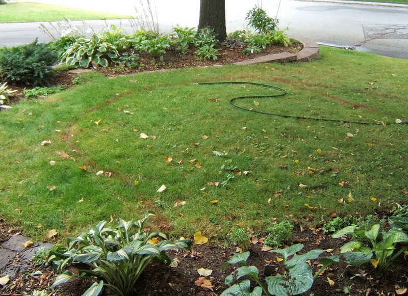 The creation of the actual garden began with a hose and a can of spray paint to mark the new area.