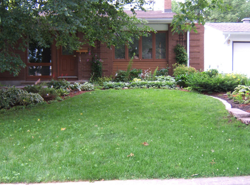 This is what the front lawn looked like before. It was also about the only shady spot left in the yard and if I wanted to add more Hostas, this is where they needed to go.<br /> <br /> This is set up in Journal format. You can click on ANY picture to enlarge it.