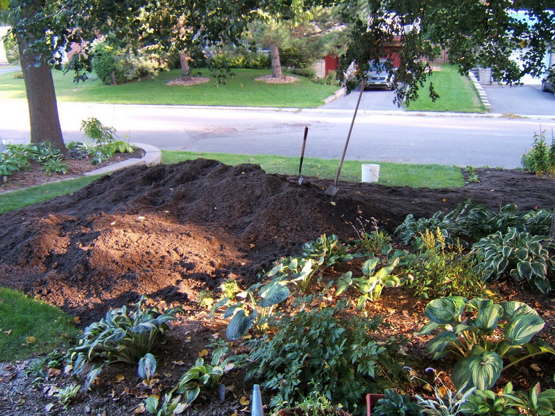 Then the work began spreading it evenly and top dressing all the other gardens as well.