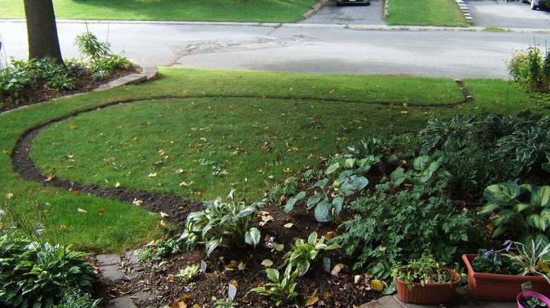 The entire garden edged to make a clean break from the lawn.