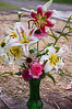 bouquet,  mid-summer (liliy, coneflower, rose)