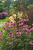 garden border, summer