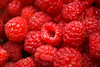 Rubus spp (red raspberries)