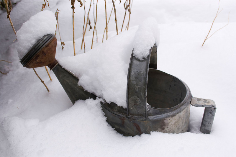 watering can in snow