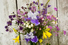 bouquet, late spring (iris, columbine, sweet rocket, lupine, lemon liliy)