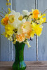 bouquet, spring, daffodils and forsythia