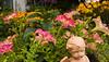 garden angel with petunias