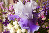 iris in bouquet