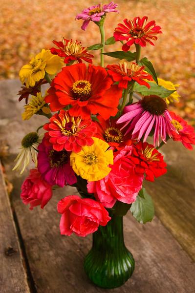 bouquet, autumn  (zinnia, coneflower, rose)