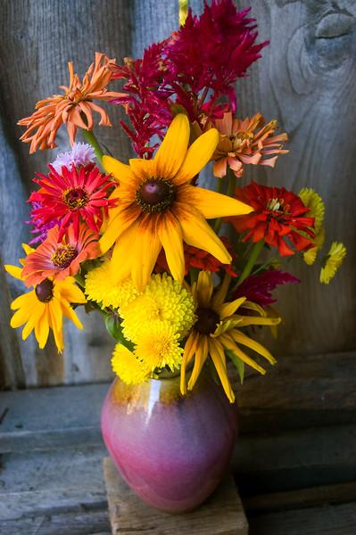 bouquet, late summer (zinnia, mum, celosia, black-eyed Susan)