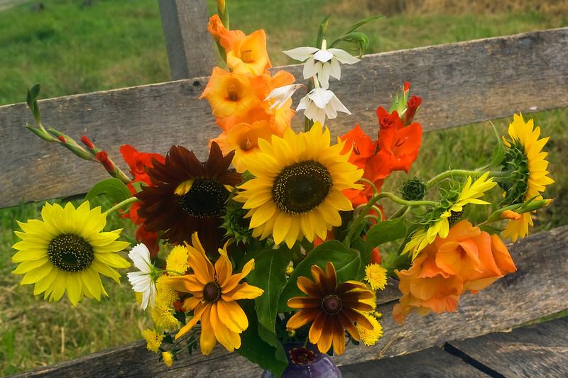 bouquet, summer, gladiolus, rudbeckia, sunflower