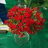 Kalanchoe Blossfeldiance, cut flower