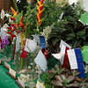 Cut flowers on display