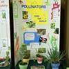 Winning educational exhibit, Pollinators