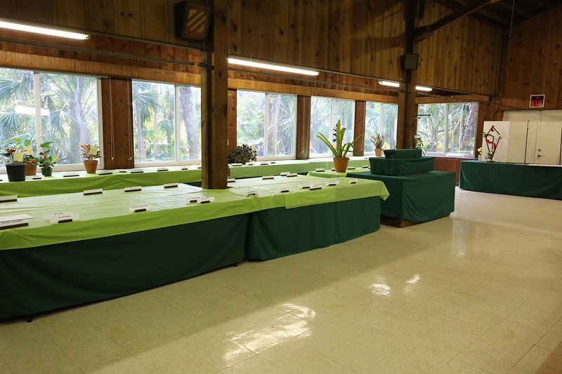 Tables covered with tablecloths and plant identifications cards wait for entries.