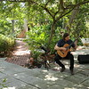 classical guitarist plays in the garden