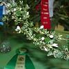 """Garden Show<br /> """"Serissa, Snow Rose"""""""