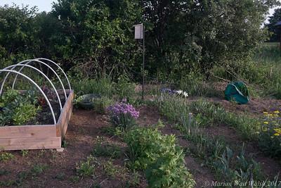 20150507 garden-7